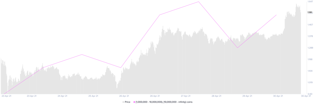 Distribución de suministro de XRP por Santiment