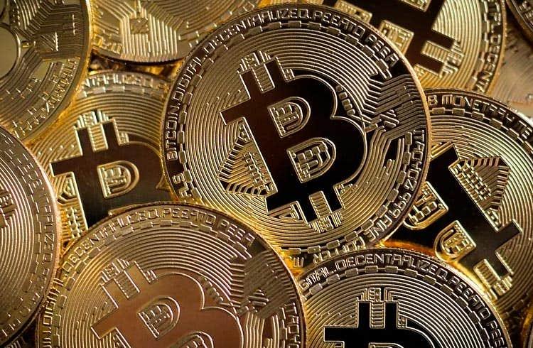 profitto btc italia, pacchetti alamat kantor pt bitcoin indonesia